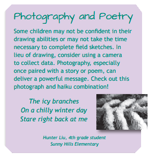 photography-and-poetry-connection