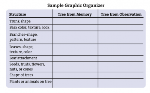 sample-graphic-organizer