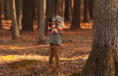 child-photographing-the-autumn-woods