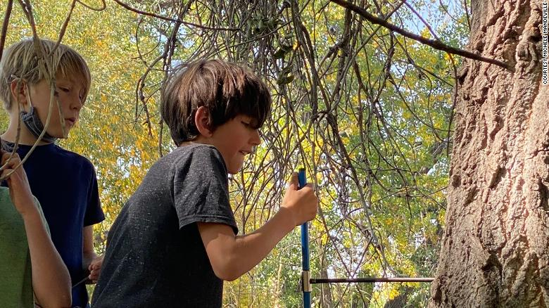 Ten-year-old boy taking a core sample from a tree.