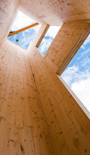 building with cross laminated timber