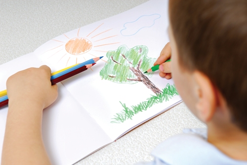 young boy draws a tree with colored pencils