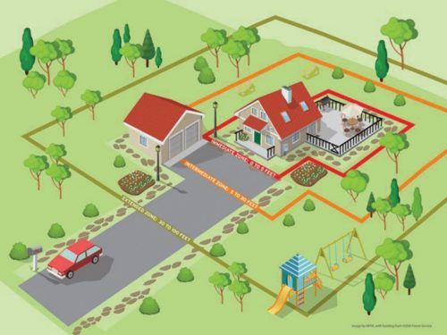 illustration of a home and its surroundings that make it safer from wildfire