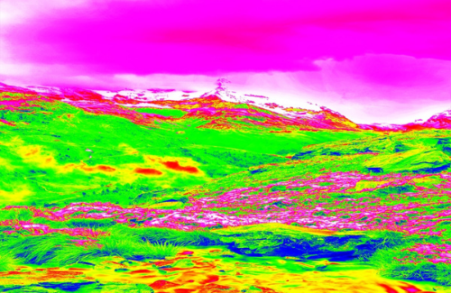 brightly multicolored infrared photo of a landscape