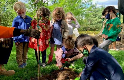 children gather around a tree being planted