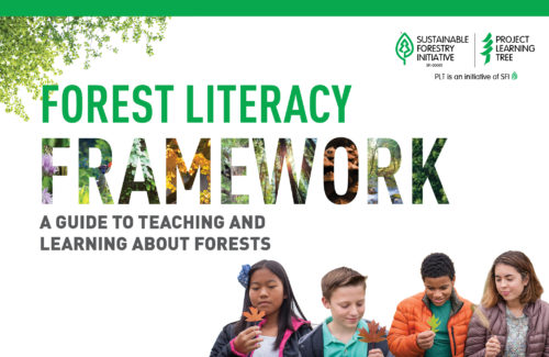 cover of plt's forest literacy framework with four different children inspect leaves in front of a white background