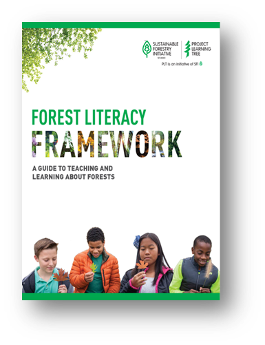 cover of plt's forest literacy framework featuring four children holding different leaves and plants and inspecting them