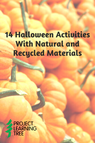 14 Halloween activities with natural and recycled materials