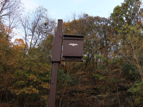 dark brown wooden bat house on a pole outside